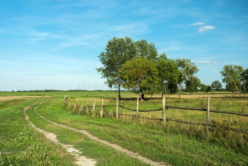 Estrada rural através de um prado, de uma cerca de madeira e de umas árvores imagens de stock royalty free