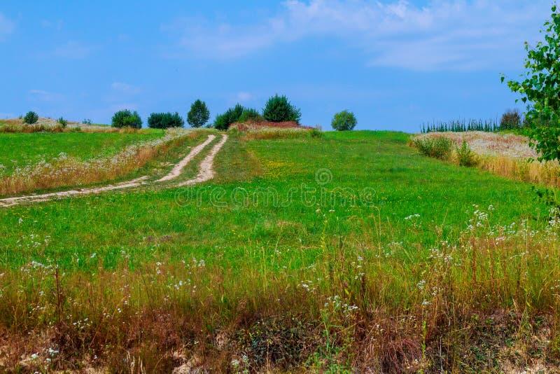 Estrada rural na paisagem letão fotos de stock