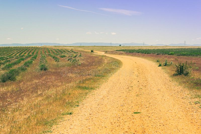 Estrada rural no campo durante a mola foto de stock