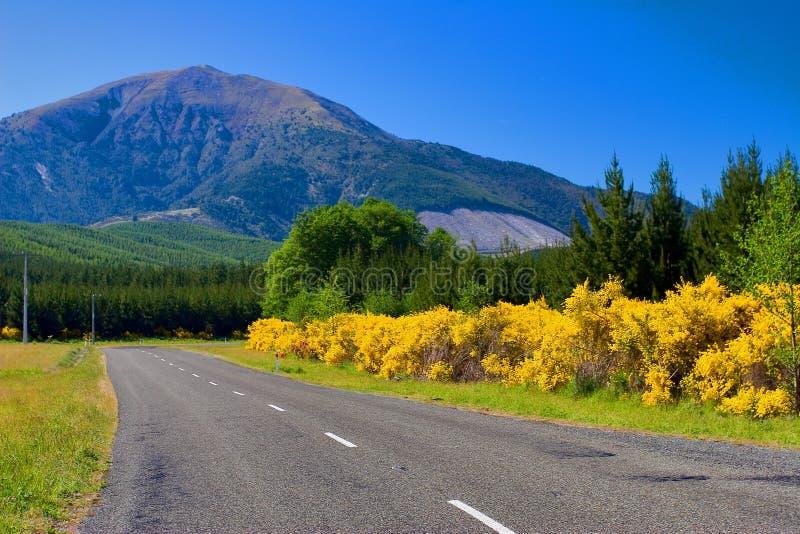 Estrada rural Nova Zelândia imagens de stock royalty free