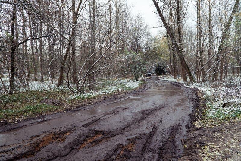 Estrada rutted lama na floresta foto de stock royalty free