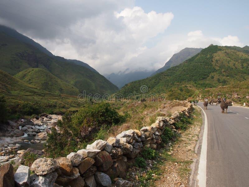 Estrada a Sapa em Vietname imagem de stock