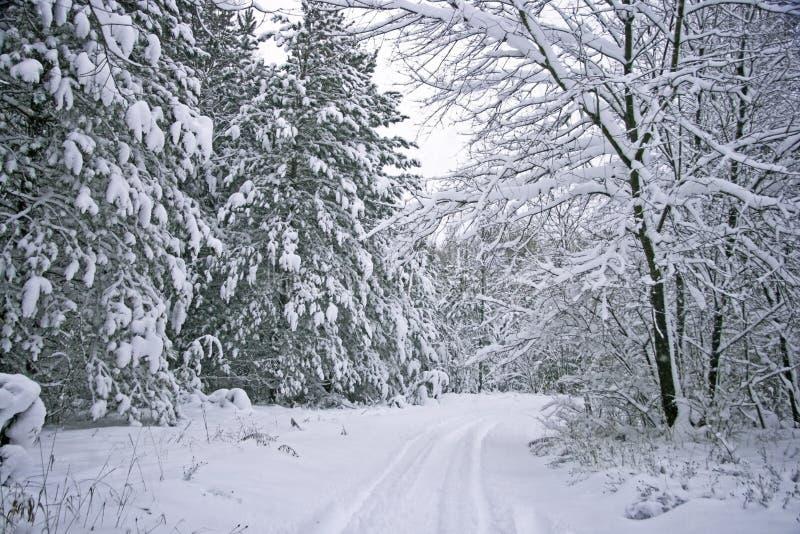 Estrada sazonal cénico do inverno fotografia de stock royalty free