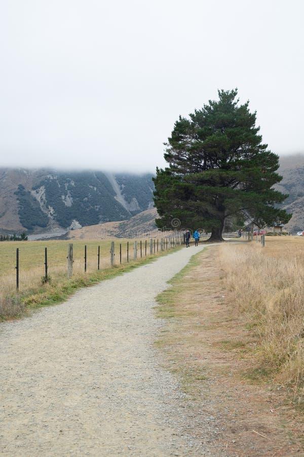 Estrada secundária através da floresta e do relâmpago fotos de stock