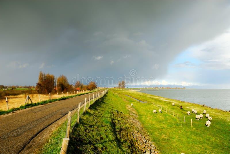 Estrada secundária bonita nos Países Baixos imagem de stock