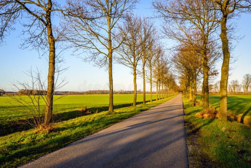 Estrada secundária convenientemente infinita nos Países Baixos fotos de stock
