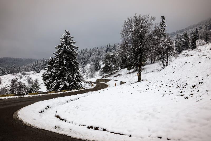 Estrada secundária da estrada do inverno que conduz com o landsca da montanha do inverno imagem de stock royalty free