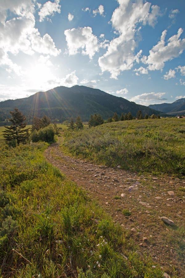 Estrada secundária da sujeira do cascalho em Rocky Mountains central em Wyoming alpino fotografia de stock royalty free