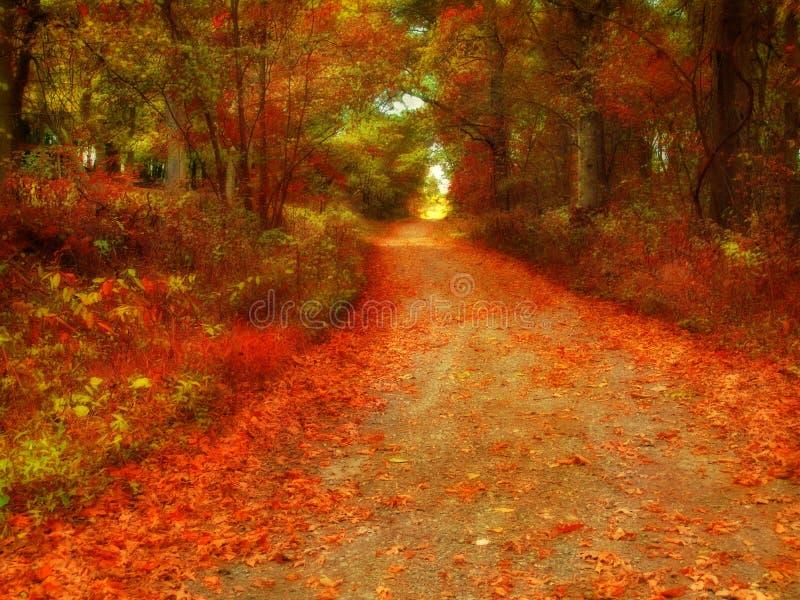 Estrada secundária do outono imagens de stock royalty free