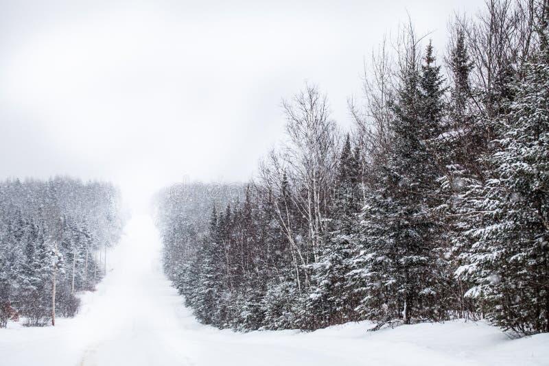 Estrada secundária durante uma tempestade de neve fotografia de stock royalty free
