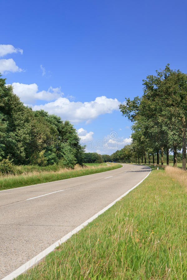 Estrada secundária em um ambiente veraniço verde, Brabante, Países Baixos imagem de stock royalty free