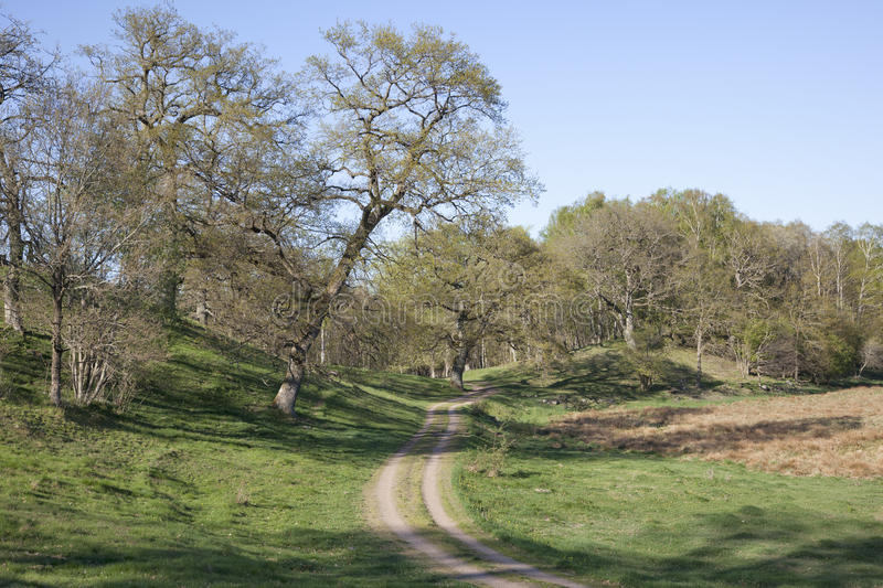 Estrada secundária em uma paisagem da mola imagens de stock royalty free