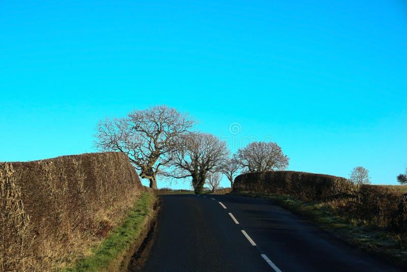 Estrada secundária no inverno em Escócia imagens de stock royalty free
