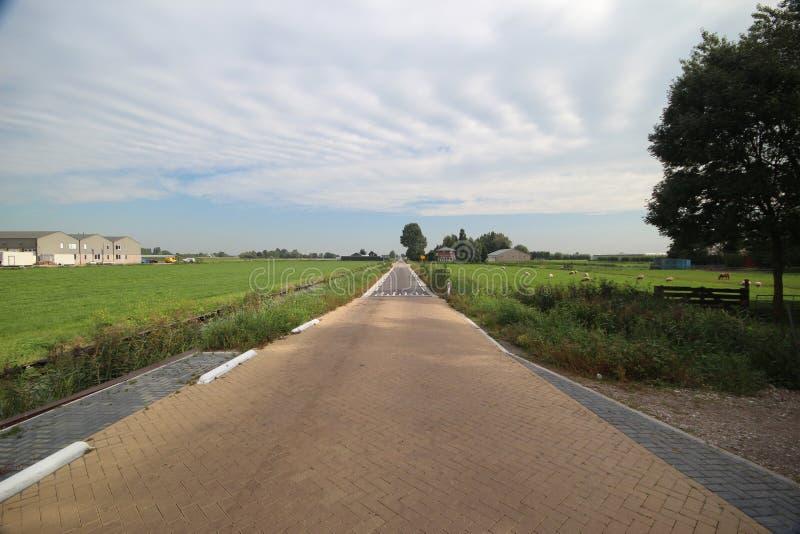 Estrada secundária no meio do mais baixo po'lder dos Países Baixos no Zuidplaspolder, fotografia de stock royalty free