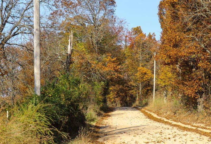 Estrada secundária só do cascalho no outono que disapearing nas árvores pendendo sobre com polos bondes e uma árvore que fosse go fotografia de stock royalty free