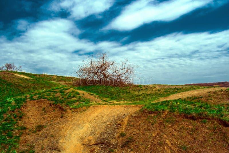 Estrada, um trajeto na paisagem verão e mola, natureza verde com vegetação Esperando a maneira O começo da viagem foto de stock