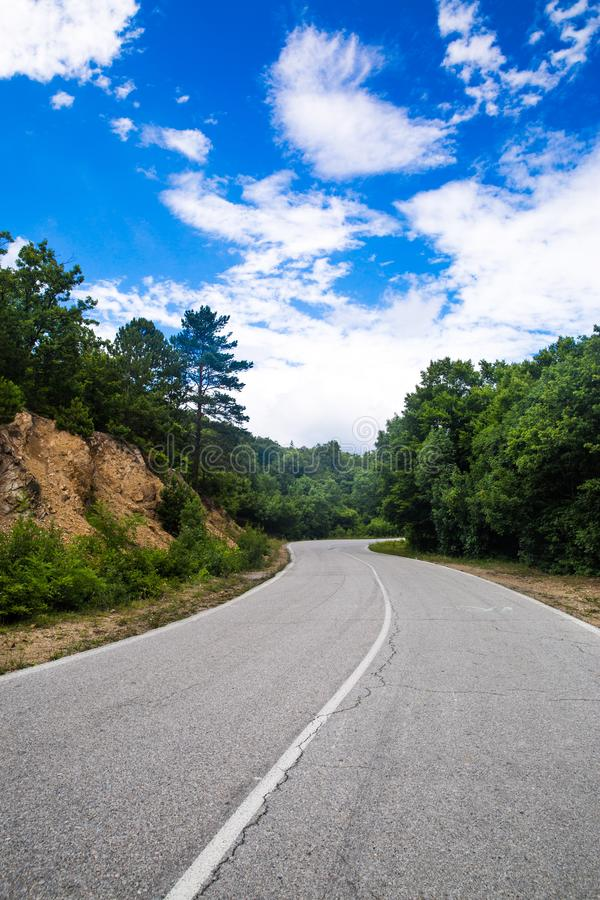 Estrada vazia da estrada na floresta fotos de stock