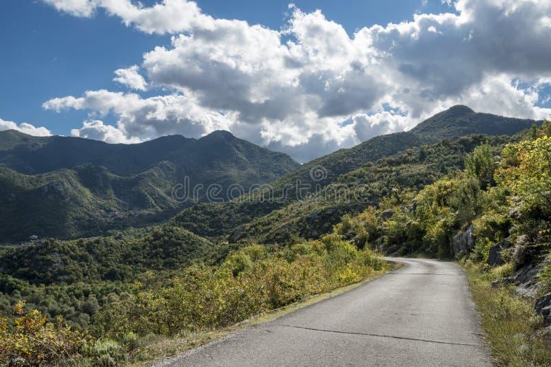 A estrada vazia em algum lugar em Montenegro fotos de stock