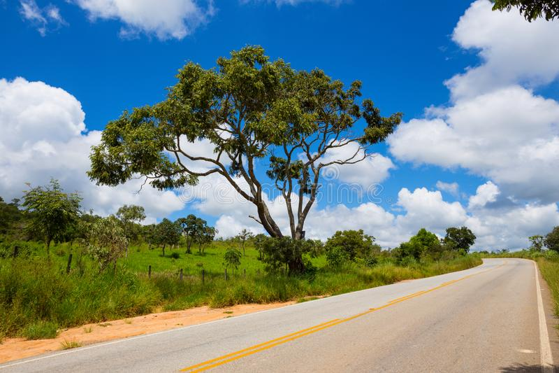 Estrada vazia no Brasil fotografia de stock royalty free