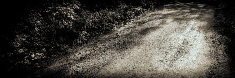 Estrada velha na bandeira da Web da floresta imagens de stock