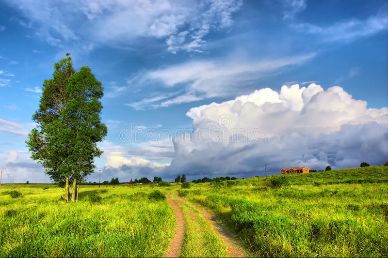 Download Estrada Vermelha Da Areia Através Do Campo Foto de Stock - Imagem de campo, tempestade: 29840326