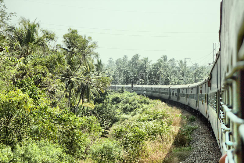 Estradas de ferro indianas Passagens Railway do ramo através da floresta da palma fotos de stock royalty free