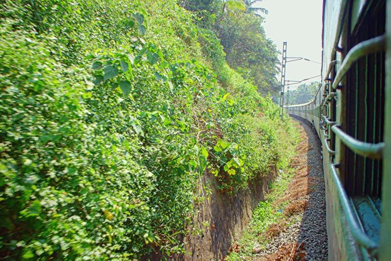 Estradas de ferro indianas Passagens Railway do ramo através da floresta da palma imagens de stock