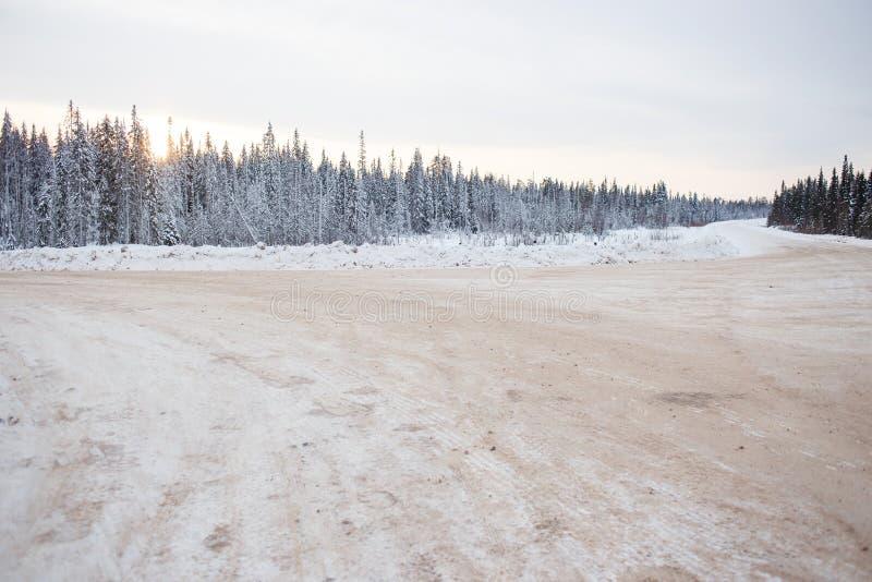 Estradas transversaas de estradas de floresta no dia de inverno gelado taiga imagens de stock