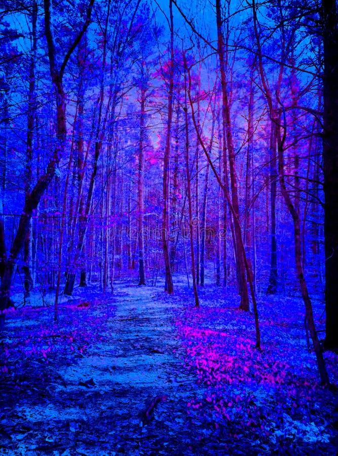 Estrangeiros que vêm na floresta azul e roxa da obscuridade - imagens de stock