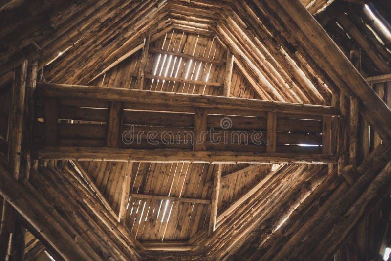 Estratti di legno fotografia stock