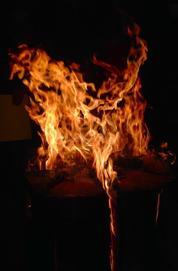 Estratto del fuoco di torrefazione fotografia stock