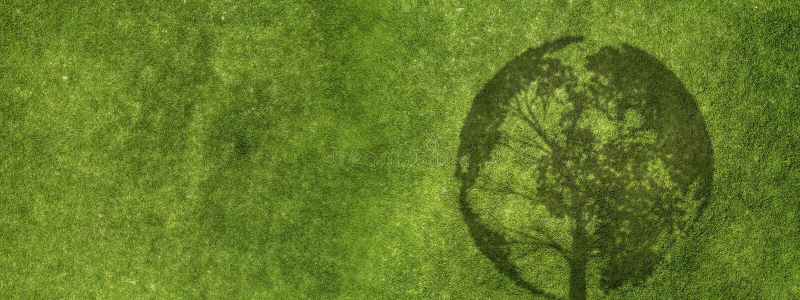 Estratto dell'erba verde immagini stock libere da diritti
