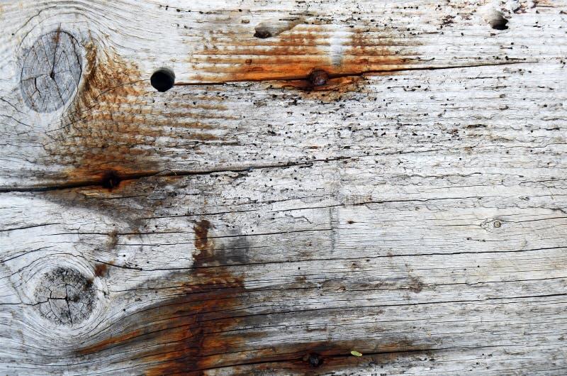 Estratto di legno di struttura fotografia stock libera da diritti