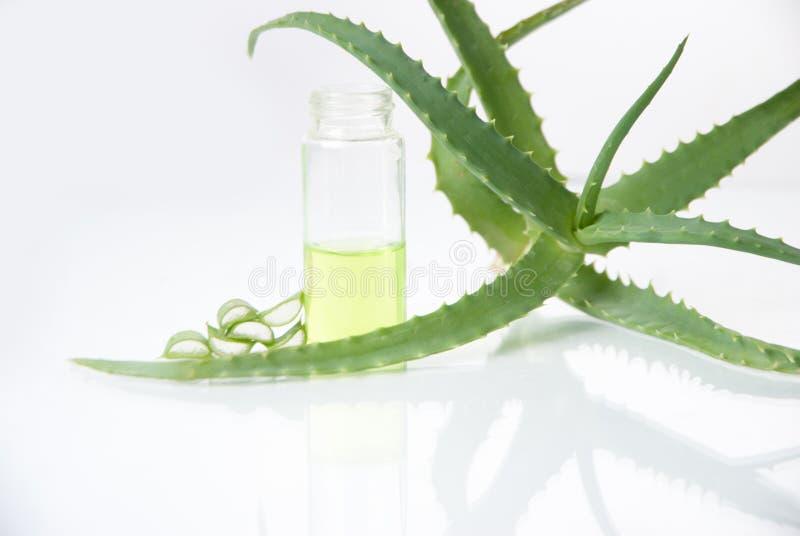 Download Estratto Di Piante. Chimica Naturale. Fotografia Stock - Immagine di estetiche, background: 30831462