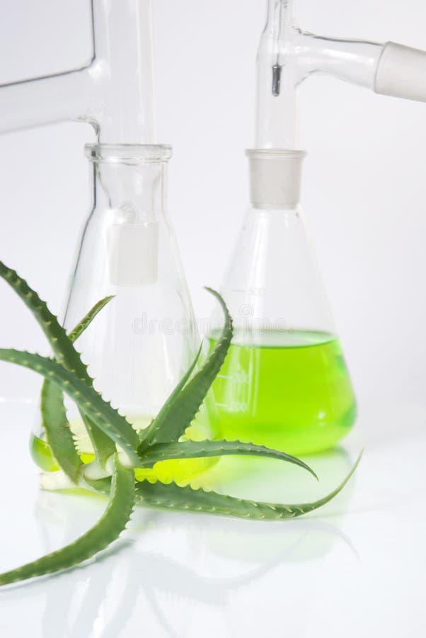 Download Estratto Di Piante. Chimica Naturale. Fotografia Stock - Immagine di dermatologia, cactus: 30831558