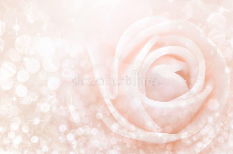 Estratto Le rose dolci di colore nel bokeh strutturano la sfuocatura molle fotografia stock libera da diritti