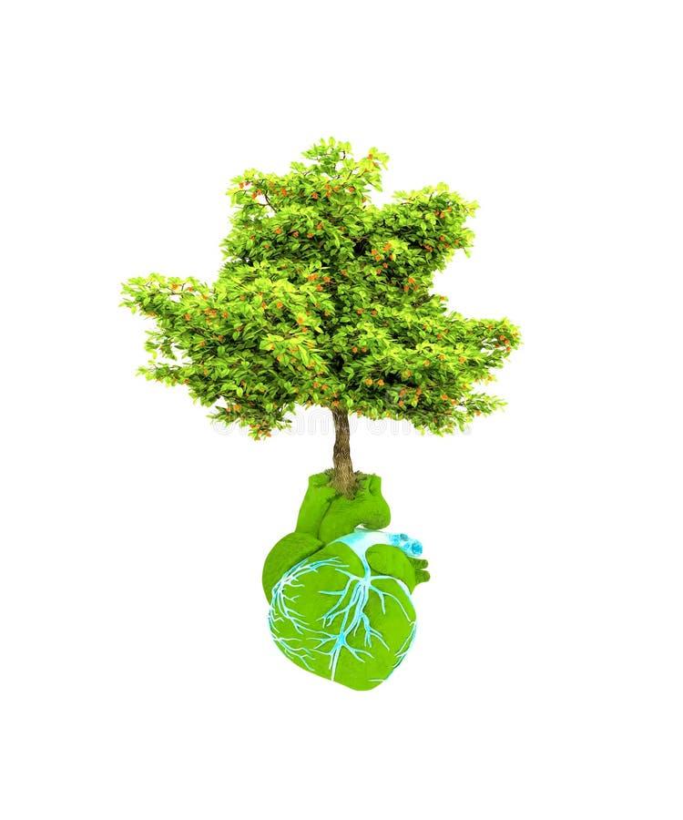 Estratto sotto forma di cuore e di albero illustrazione vettoriale