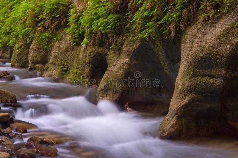 Estrechos del río de la Virgen imagen de archivo