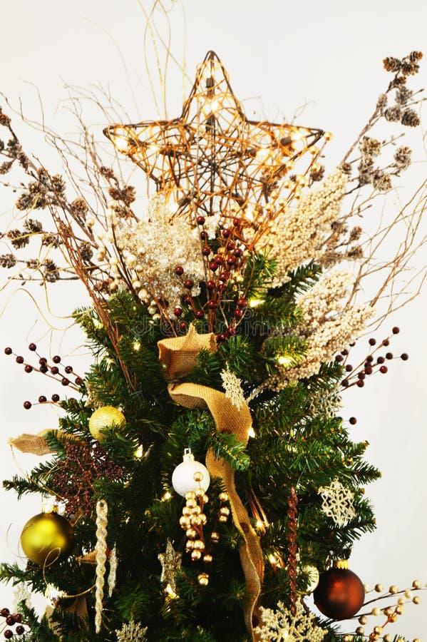 Estrela da árvore de Natal imagens de stock royalty free