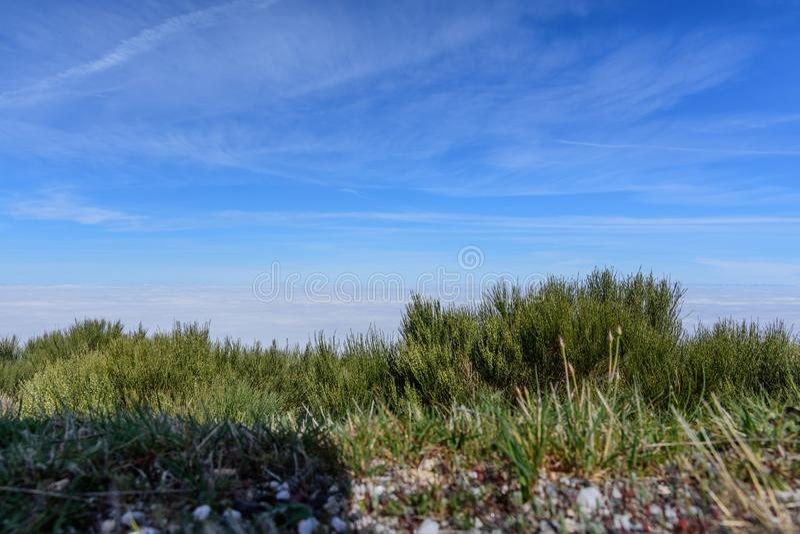 Estrela DA serra βουνών στην Πορτογαλία στοκ φωτογραφίες με δικαίωμα ελεύθερης χρήσης