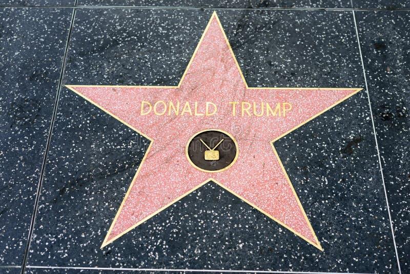 Estrela de Donald Trump na caminhada de Hollywood da fama fotografia de stock royalty free