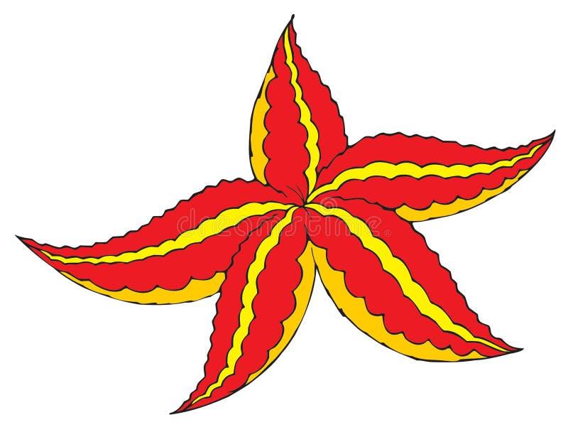 Estrela de mar ilustração stock