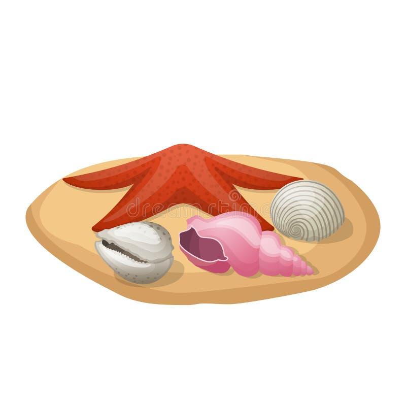 Estrela do mar e conchas do mar na areia ilustração royalty free