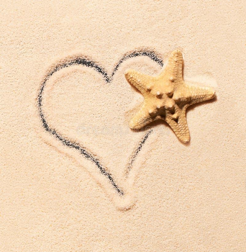 Estrela do mar e coração tirados na areia foto de stock
