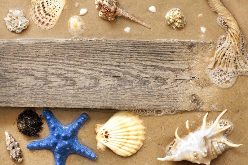 Estrela do mar e escudos na praia com placa vazia imagens de stock royalty free