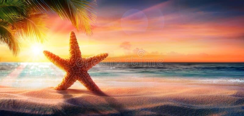Estrela do mar na areia na praia tropical imagem de stock royalty free