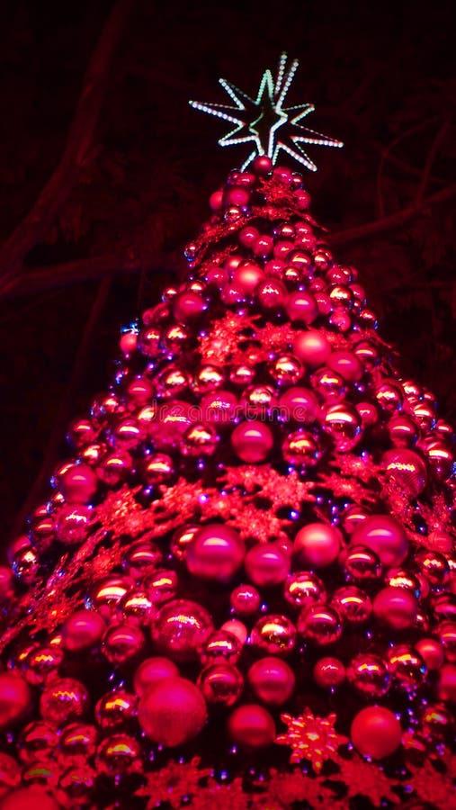 Estrela marrom do bokeh dos tinir do rosa da árvore de Natal imagens de stock royalty free