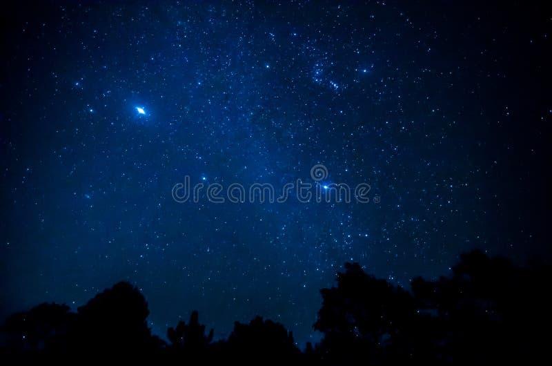 Estrela no céu foto de stock
