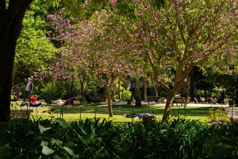 Estrela ogród w Lisbon fotografia royalty free