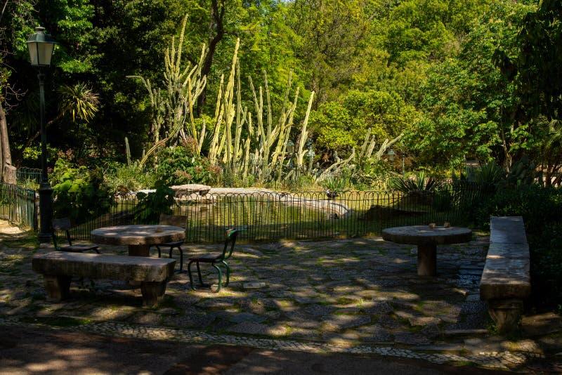 Estrela ogród w Lisbon zdjęcie royalty free